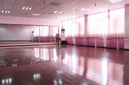 大型商场舞蹈培训机构转让艺术培训带生源转让